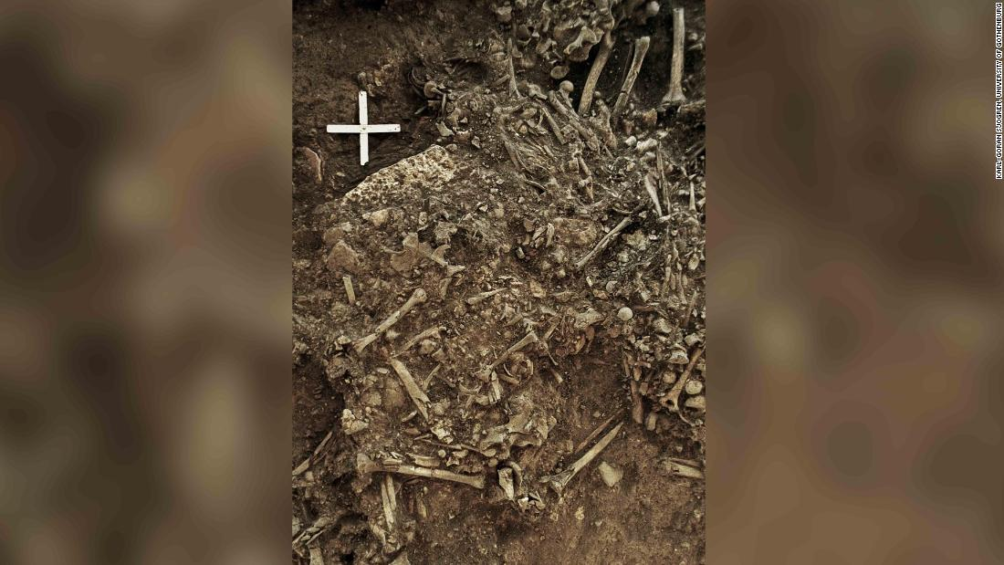 Ancient plague helped determine genetics of the modern European, study says