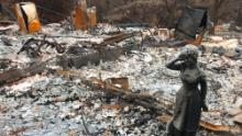 A statue stands amid the ruins of a home destroyed by the Camp Fire in Paradise, California.