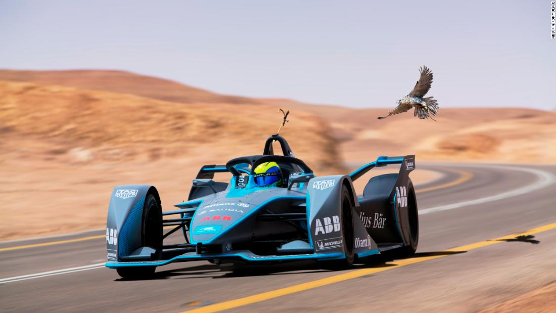 Massa races the fastest animal on earth