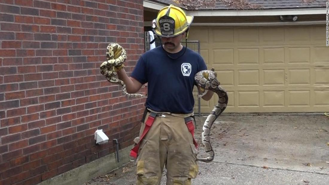 Firefighters rescue dozens of reptiles from a burning home