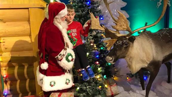 Santa Claus carried Matthew Wolf to touch a one of the animal figures in his Christmas display.