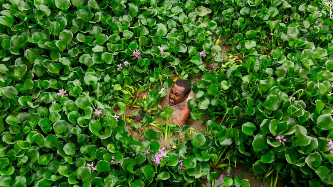 "During a ""Save Lake Tana"" march in 2017 in Bahirdar, Ethiopia, <a href=""https://www.mhaile.com/"" target=""_blank"">Tadese</a> photographs a volunteer removing water hyacinth, an aquatic invasive weed that has become a serious threat to both the lake and the biodiversity within it."