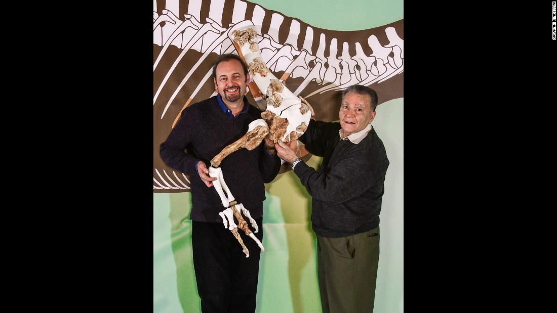 Cristiano Dal Sasso, left, and Angelo Zanella match the shoulder girdle and right forelimb of Saltriovenator with a life-size silhouette of the dinosaur.