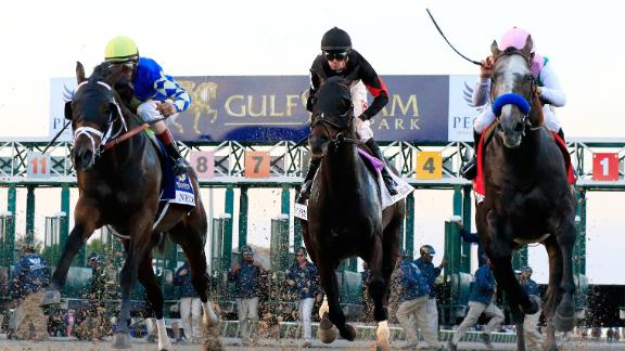 The Pegasus World Cup was the richest horse race in 2018, with an improved prize fund  of $16 million. The event was re-imagined for 2019 with a reduced pot of $9M for the dirt race and $7M for a separate turf race.