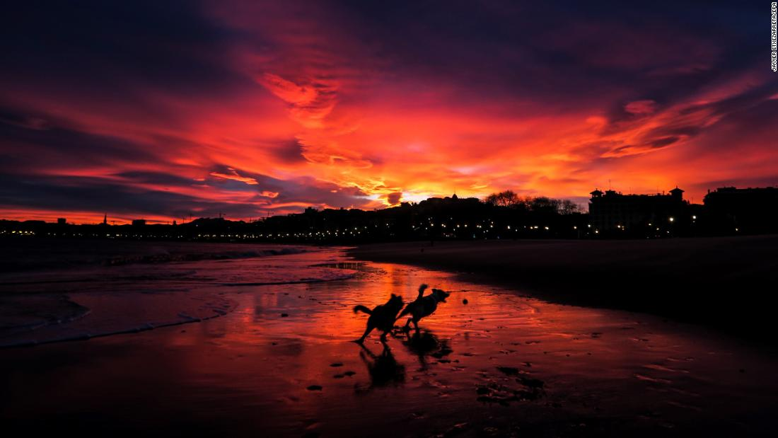 <strong>San Sebastian, Spain: </strong>Dogs run free along Ondarreta Beach as a dramatic sunset takes over the December sky.