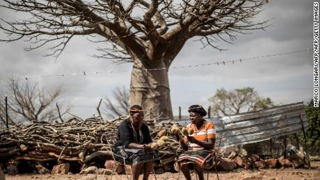 Baobab fruit harvesters keep baobab fruits they have harvested in the village of Muswodi Dipeni in Limpopo Province, South Africa, August, 2018.