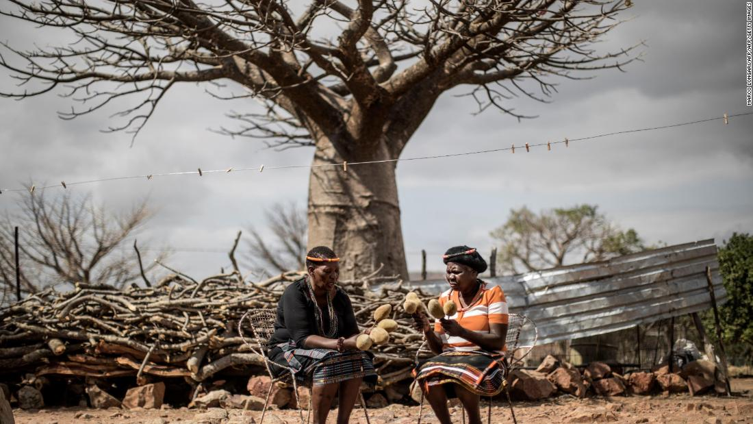 Harvesters hold baobab fruits they harvested in the village of Muswodi Dipeni in the Limpopo province, South Africa, in August 2018.