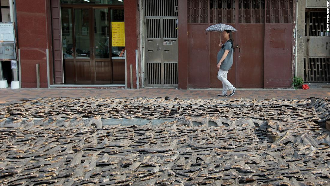 Shark fins with skin in the drying process near Sheung Wan in Hong Kong.
