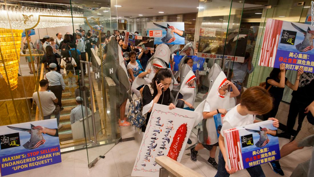Protests against shark fin at the popular Hong Kong restaurant chain Maxim's.