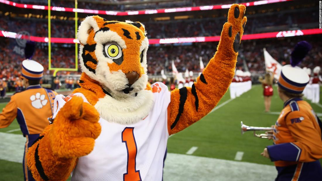 Clemson's mascot, ready for the big game.