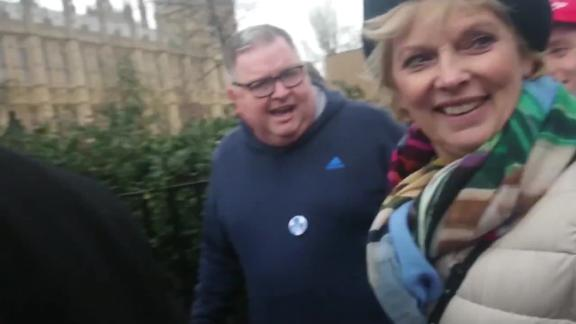 Anna Soubry filmed being abused by far-right activists on the way to Parliament.