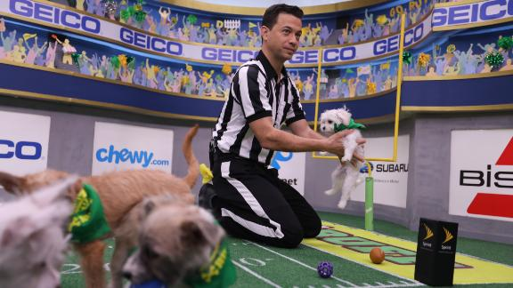 Dan Schachner, the Puppy Bowl referee, holds up Pistachio, the Puppy Bowl