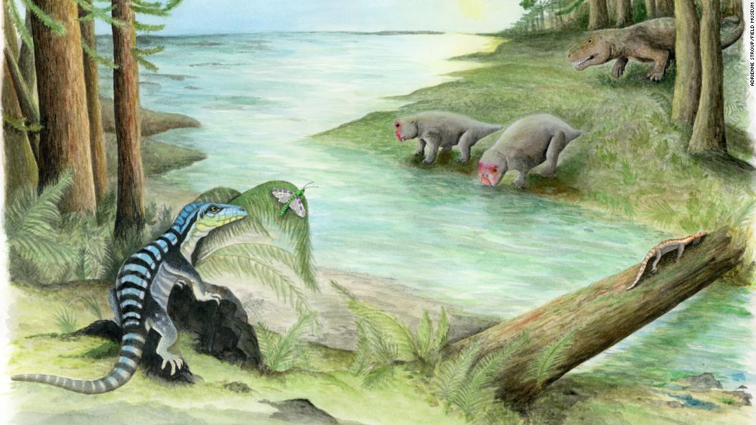 This is an artist's illustration of Antarctica, 250 million years ago. The newly discovered fossil of a dinosaur relative, Antarctanax shackletoni, revealed that reptiles lived among the diverse wildlife in Antarctica after the mass extinction.