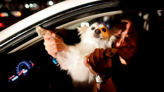 A driver in Tehran dances with his dog at a 2009 political rally. Despite religious stigma around dogs, Iran's middle class have embraced them as pets for years.
