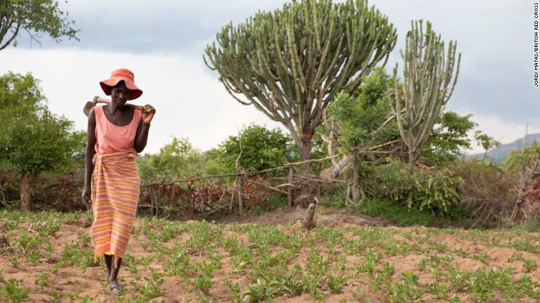 Tarisai Mubhoyi, 43, farms her field of ground nuts that she's been able to grow despite the drought.