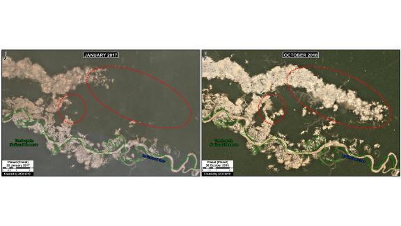 Satellite imagery provided by MAAP shows the growing damage that gold mining has caused between 2017, left, and 2018 in the La Pampa region of Peru.