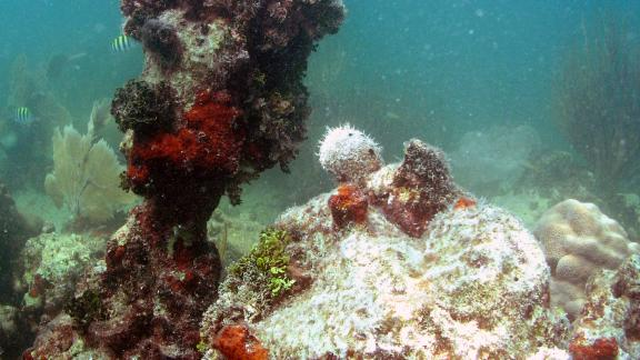A reef with little living coral and extensive bioerosion in the Florida Keys.