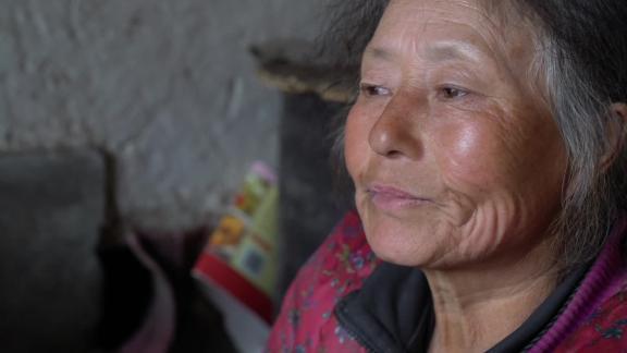 China elderly population