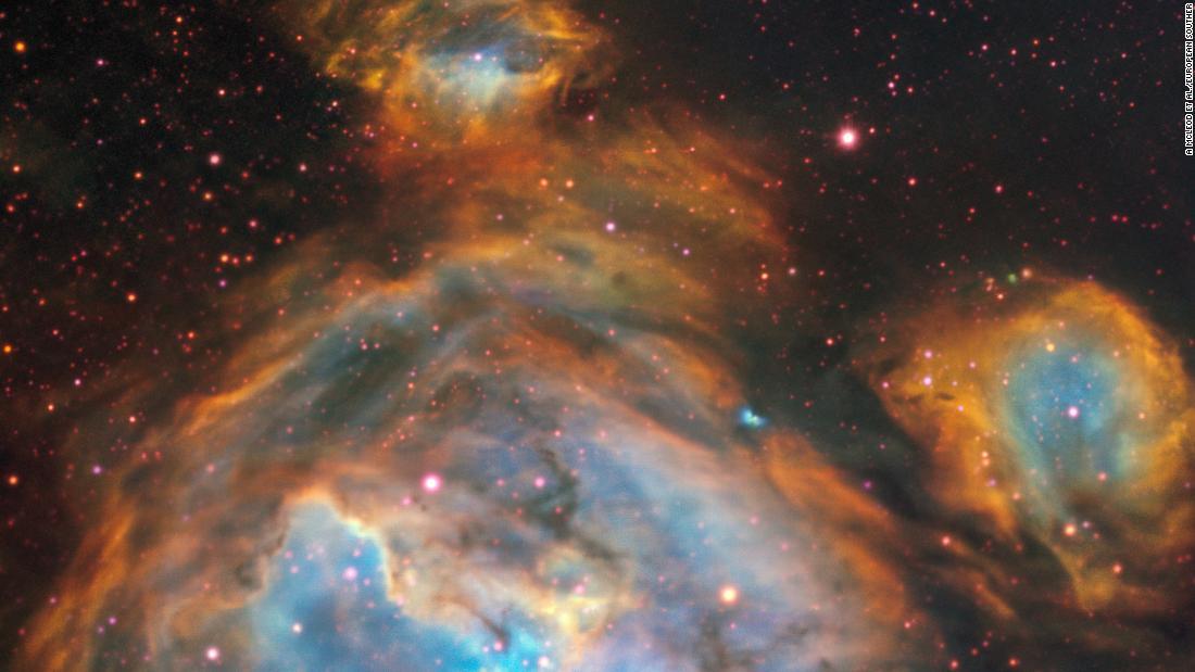space science week weird super species cnn catfish