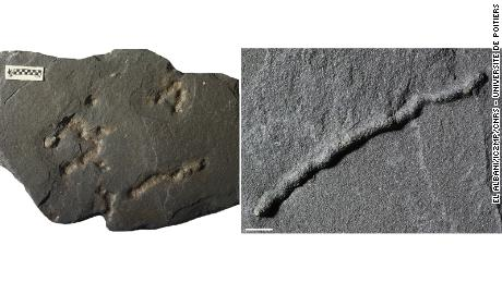 Previously, the oldest traces of this kind dated to approximately 600 million years ago.