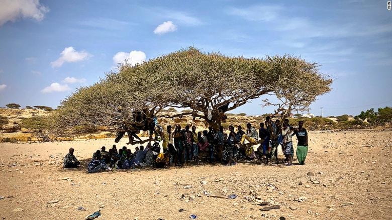 Ethiopian migrants in Djibouti waiting to make the ocean crossing to Yemen, from where they will transit to Saudi Arabia. They say they are unaware there is a war in Yemen.
