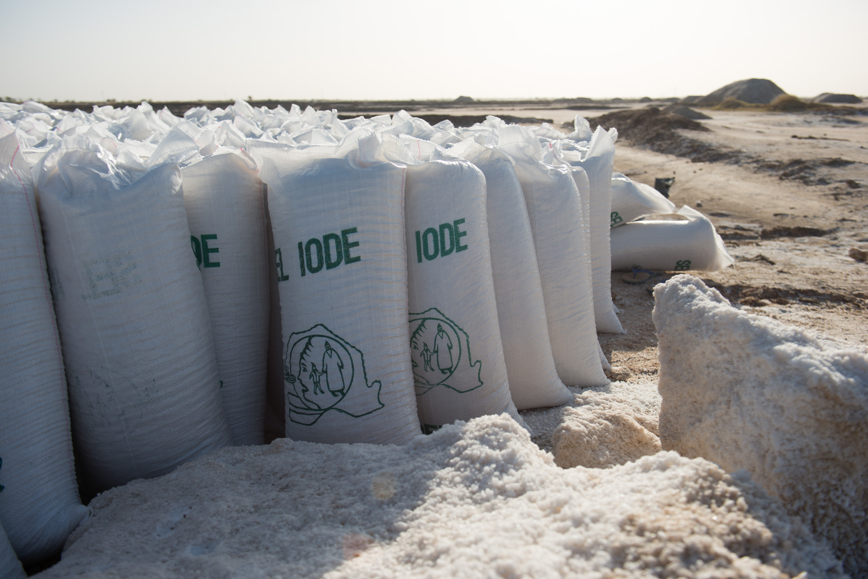 Bags of iodized salt ready for distribution.