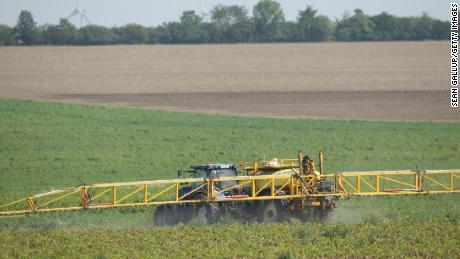 ASCHERSLEBEN, GERMANY - AUGUST 25:  A tractor sprays pesticide onto a field of potato plants on August 25, 2017 near Aschersleben, Germany. The use of glyphosate in pesticide has become a controversial issue in Europe, with opponents claiming glyphosate can cause cancer while proponents argue evidence of harmful effects is insufficient.  (Photo by Sean Gallup/Getty Images)