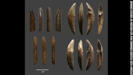 Early humans used bows and arrows to hunt in tropical rainforests 48,000 years ago, study says