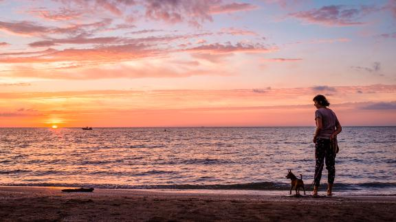 A beachgoer and her dog pause along the Lake Erie shore.