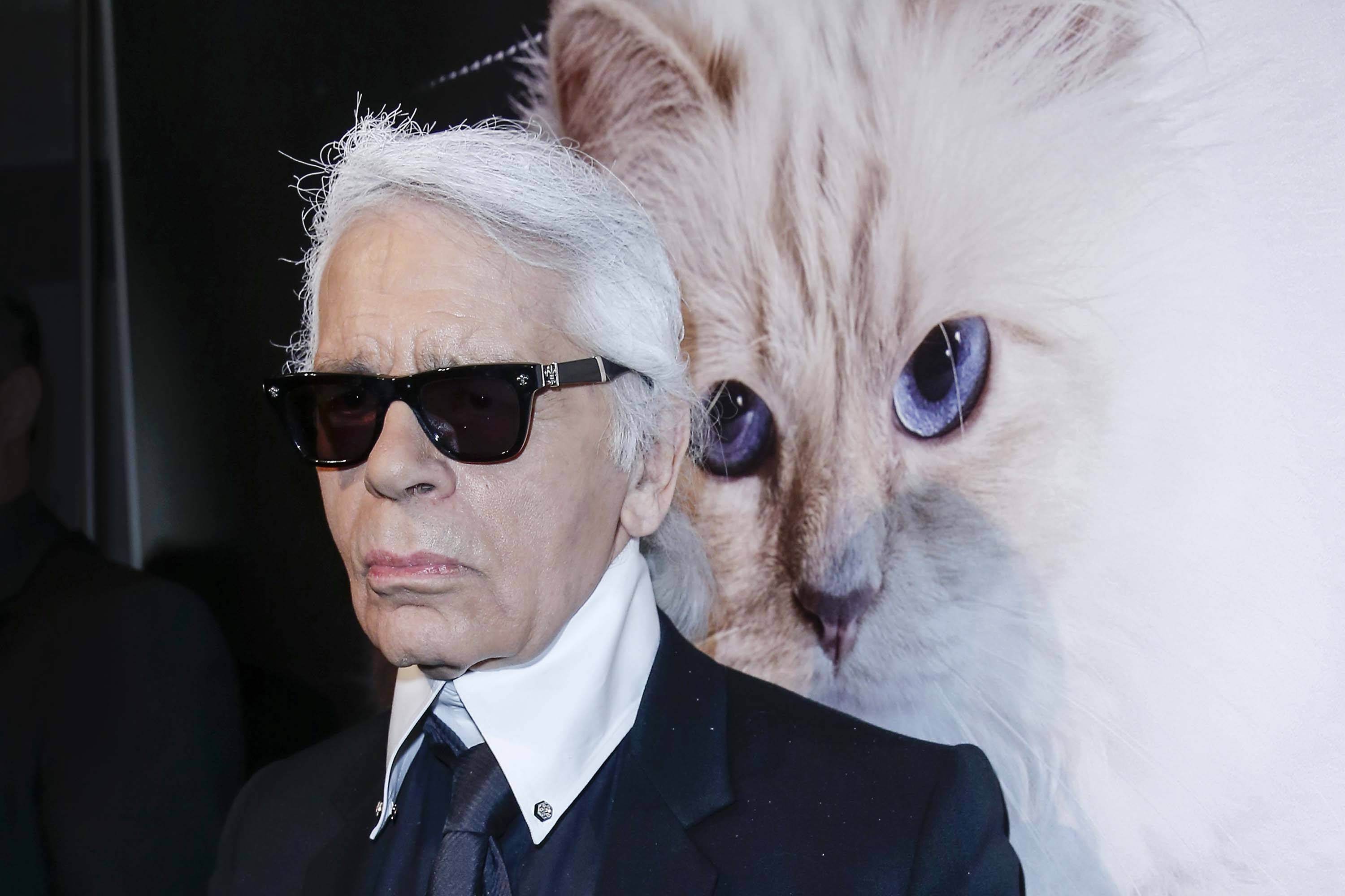 Choupette Karl Lagerfelds Cat Became An Instagram Star Cnn Style