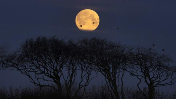 Whitley Bay, UK - A full moon sets near Whitley Bay in the United Kingdom on February 19 as the sun begins to rise, ahead of the super snow moon on Tuesday evening