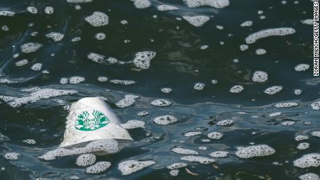 Garbage and rubbish on the surface of New York's East River. New York, New York, USA. A Starbucks paper coffee cup floats on the surface of the East River.