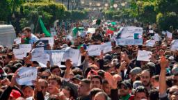 Why are Algerians protesting?
