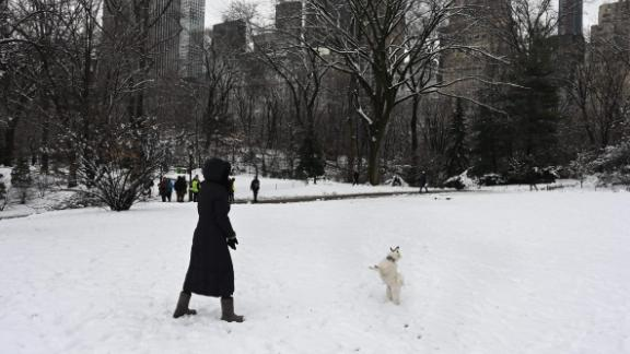 A woman plays with her dog in Central Park on Monday after 5 inches of snow fell.