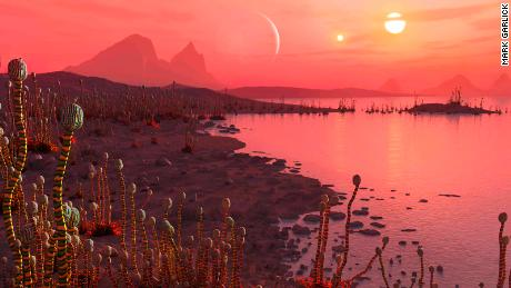For possible life on other planets, the more suns the better