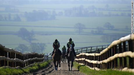 Horses from Paul Nicholls' yard exercise on the gallops at Ditcheat.