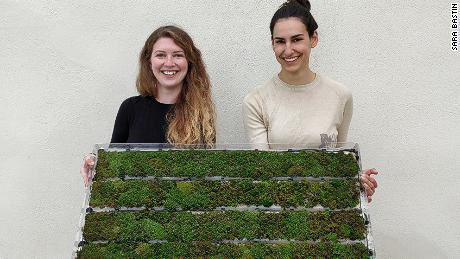 Liron Simon and Shir Esh, founders of Airy, a start-up which produces pollution-absorbing moss tiles.