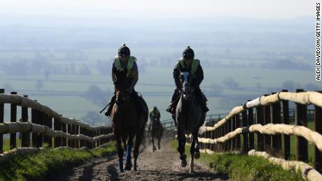 DITCHEAT, SOMERSET - FEBRUARY 26: General view as a group of horses make their way around the gallops at Manor Farm Stables on February 26, 2019 in Ditcheat, Somerset. (Photo by Alex Davidson/Getty Images)