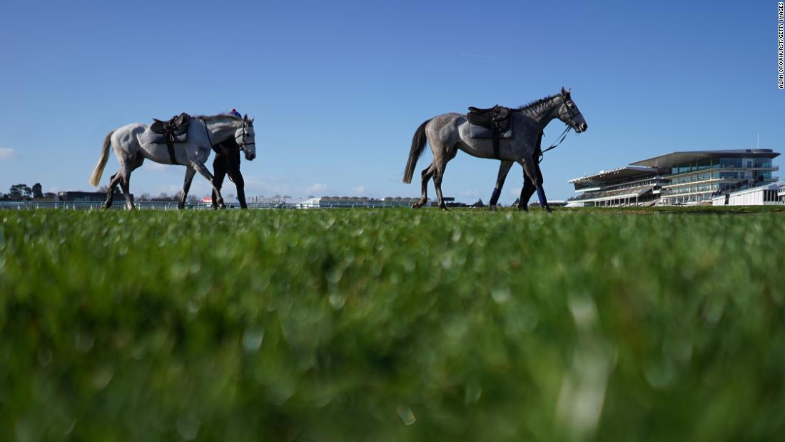 Horses cross the course after exercising ahead of the 2019 Cheltenham Festival.