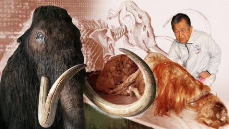 Professor Akira Iritani is a biologist and endangered species expert. .