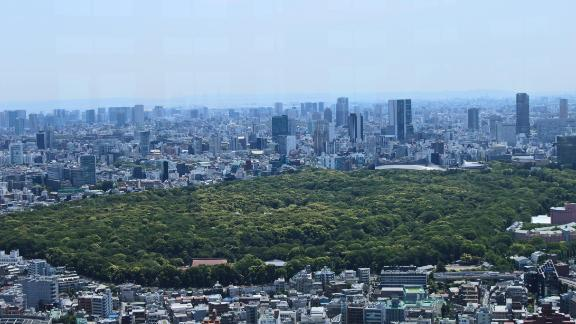 The gardens in Shinjuku -- seen from above -- also offer an oasis of green in the center of Tokyo.