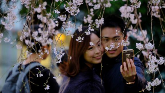 Finding an escape amid the country's bustling cities can be a welcome relief. Cherry blossoms -- which lend their name to Japan's rugby team -- are in full bloom during spring in Tokyo's Ueno Park.