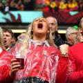 Wales Ireland fans Six Nations
