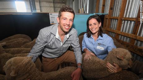 Scientists Simon de Graaf and Jessica Rickard, pictured with some of the lambs produced as part of their research.