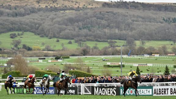 Townend and Al Boum Photo beat the likes of Presenting Percy and Clan Des Obeaux to win steeplechasing's most coveted prize.