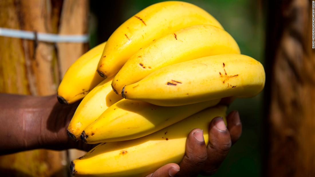 Bananas: It takes an average of 160 liters to grow one large banana. Globally, 84% of bananas' water footprint comes from rainfall and 12% from irrigation. <br />