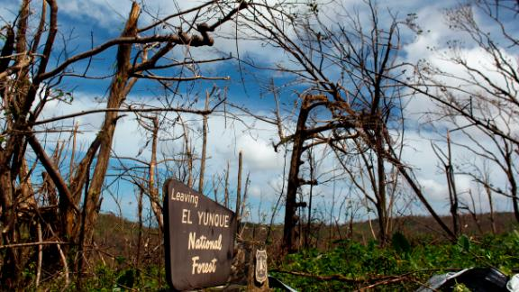 The entrance of the closed El Yunque National Forest affected by the passing of Hurricane Maria is seen in Luquillo, Puerto Rico on October 4, 2017. US President Donald Trump on asked Congress for a bumper $29 billion package of emergency relief after Hurricane Maria slammed into Puerto Rico. Hurricane Maria not only destroyed Puerto Rico's infrastructure, it also wreaked havoc on the environment, disrupting the island's entire ecosystem. But life has been thrown into turmoil for birds, insects and other organisms that depend on leaves and flowers for food and shelter. They struggle to find food and places to hide.  / AFP PHOTO / Ricardo ARDUENGO        (Photo credit should read RICARDO ARDUENGO/AFP/Getty Images)