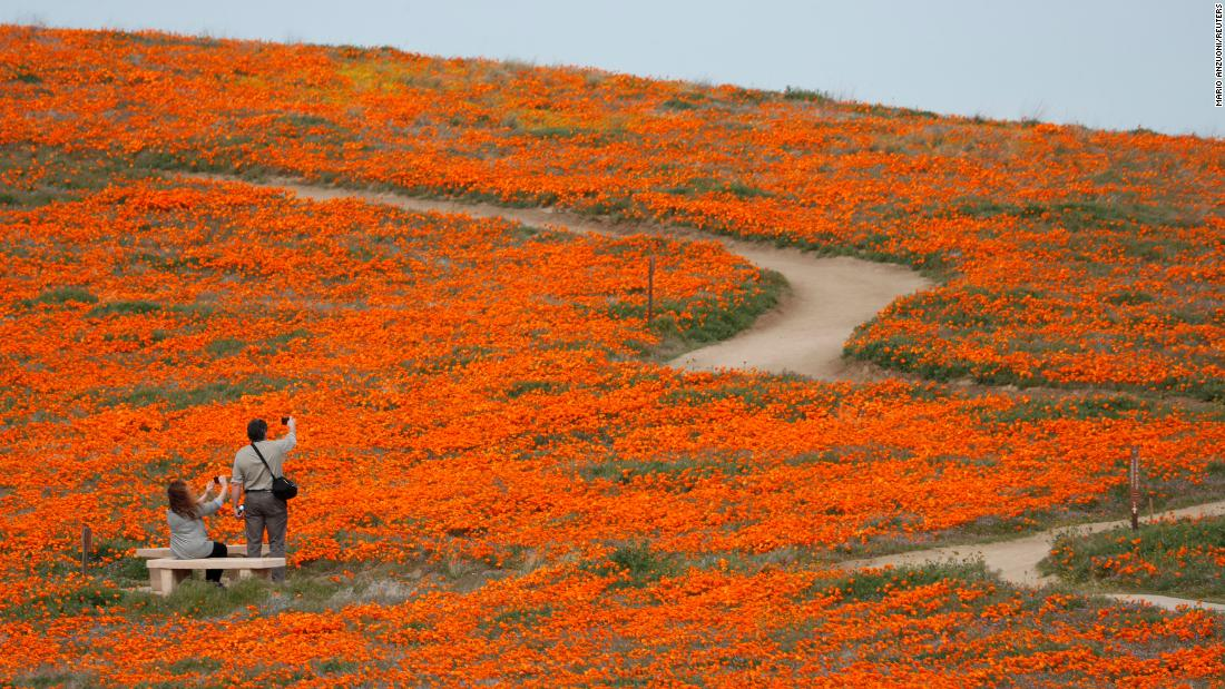 People visit the Antelope Valley California Poppy Reserve on Tuesday, March 26.