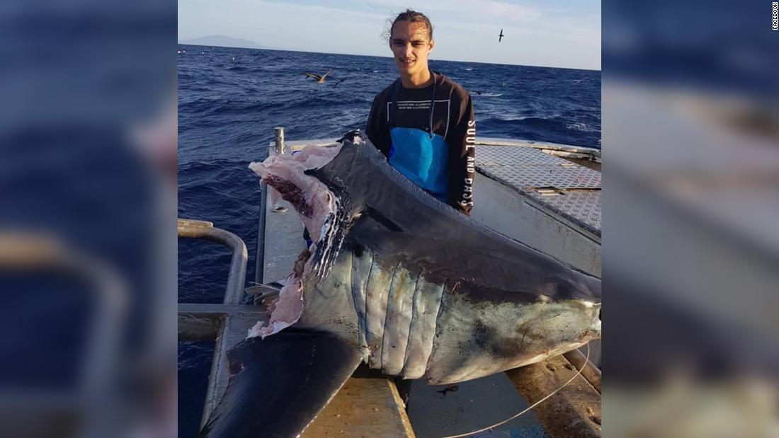 Fisherman catches giant shark -- just as something even bigger takes a bite