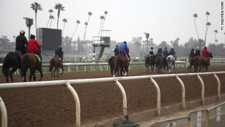 Horses exercise during a morning training session at Santa Anita Park in April.